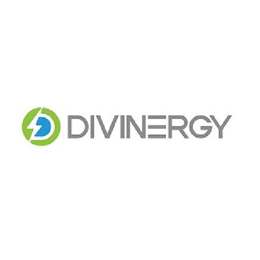 Partner 19 - Divine New Energy